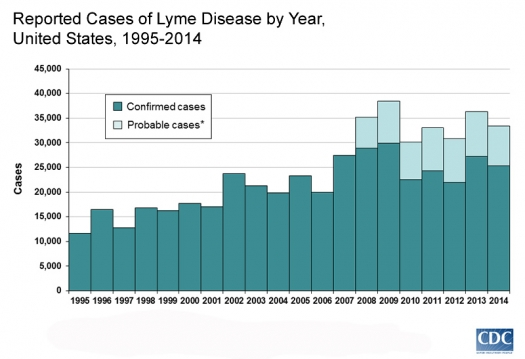 Graph showing growth in reported cases of Lyme Disease