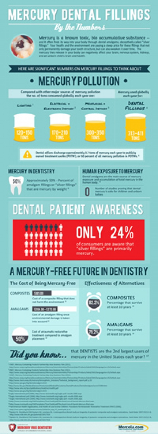Mercury Dental Fillings Infographic
