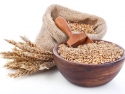 stalks of wheat next to wheat germ in a wood bowl and burlap bag