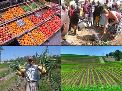 fruits, vegetables, farming